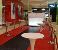 Westfield VIP Shopping Experience